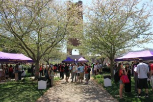 Fun in the sun, Lawn-gating on the UC lawn