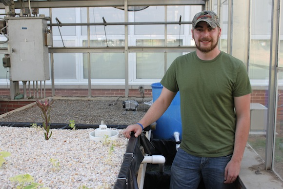 Randy Reinke built this aquaponics system in the WCU campus greenhouse.  Photo by Ben Haines.