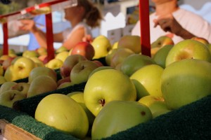 Ottanola Farms Apples