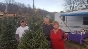 Locally grown Christmas trees bringing the holiday spirit to life